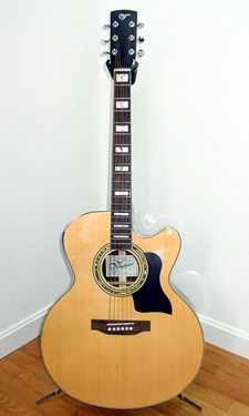 Vineyard JC501CEQ/T Acoustic w/ EQ and Tuner - click for more photos