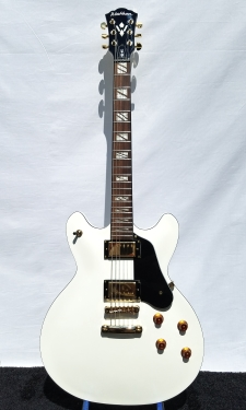Washburn HB45WHK  - click for more photos
